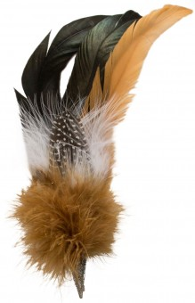 Hat Brooch, Rooster Feather, Brown