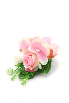 Ansteckblume Flore rosa